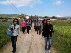 Visita grup delegacio xina agricultura Nov.2014 Torre Dorda 3